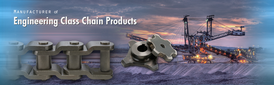 Manufacturer of Engineering Class Chain Products